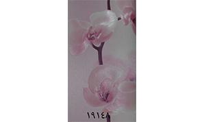 آلبوم شیبوری کد 19148